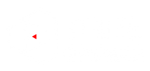 TRUE Strategic: Gun Dealer, Cumming, GA